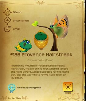 Provence Hairstreak§Flutterpedia