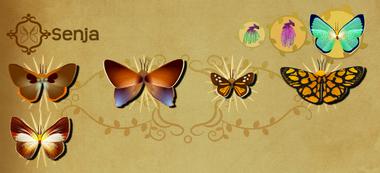 Senja Set§Flutterpedia