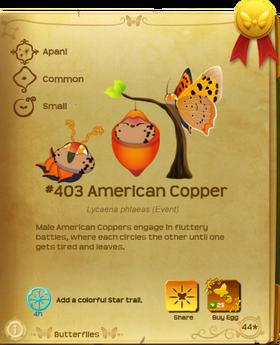 American Copper§Flutterpedia