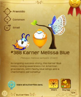 Karner Melissa Blue§Flutterpedia