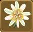 Praesidio Set§DecorationSingle DeluxeRight