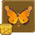 Queen Butterfly§Headericon