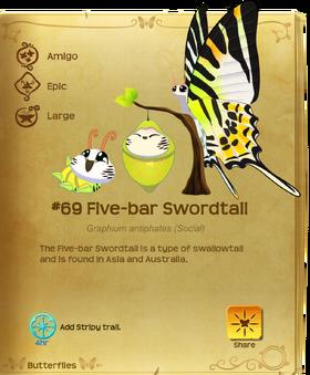 Five-bar Swordtail§Flutterpedia