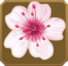 Hanabira Set§DecorationSingle CommonRight