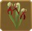 Arcanum Set§DecorationSingle DeluxeLeft