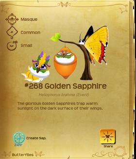 Golden Sapphire§Flutterpedia