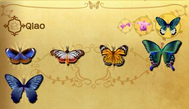 Qiao Set§Flutterpedia
