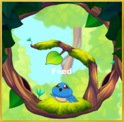 In Forest§Feed