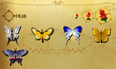 Hua Set§Flutterpedia