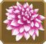 Mehndi Set§DecorationSingle CommonLeft