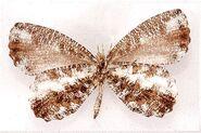 323 Pale Mottle