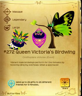 Queen Victoria's Birdwing§Flutterpedia