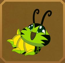 Southern Tailed Birdwing§Caterpillar