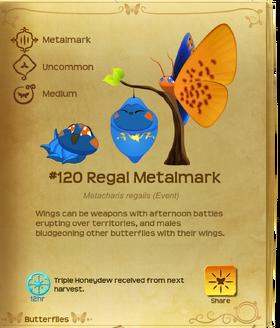 Regal Metalmark§Flutterpedia