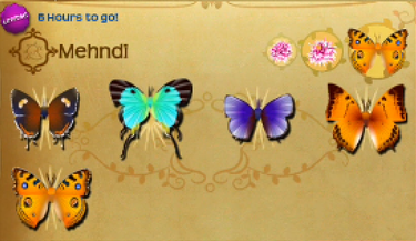Mehndi Set§Flutterpedia