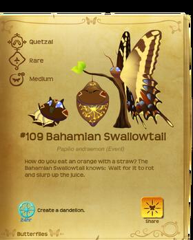 Bahamian Swallowtail§Flutterpedia