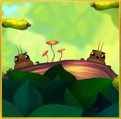 Bark Bug§InForest