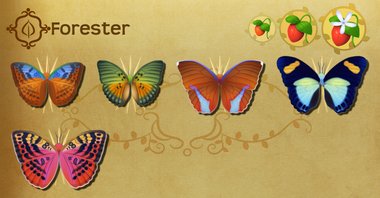 Forester Set§Flutterpedia