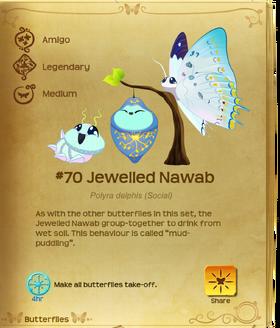 Jewelled Nawab§Flutterpedia