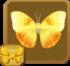 Male Orange-barred Sulphur§Headericon