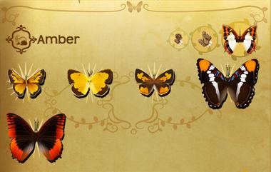 Amber Set§Flutterpedia