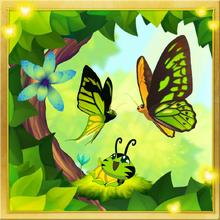 Birdwing Set§Facebook