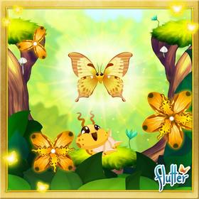 Noble Swallowtail§Facebook