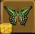 Tailed Jay§Headericon