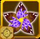 Ryuu Set§AF1 100%