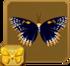 Baltimore Checkerspot§Headericon