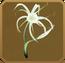Civitas Set§DecorationSingle CommonLeft