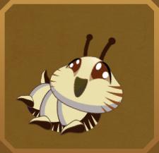 White Acraea§Caterpillar