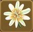 Praesidio Set§DecorationSingle DeluxeLeft