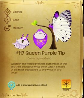 Queen Purple Tip§Flutterpedia