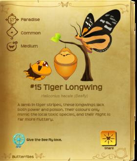 Tiger Longwing§Flutterpedia
