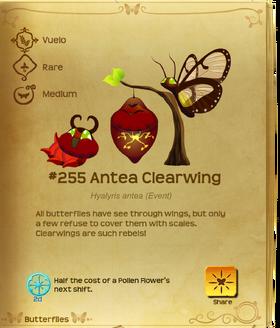 Antea Clearwing§Flutterpedia
