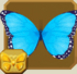 Blue Morpho§Headericon