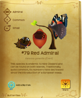 Red Admiral§Flutterpedia