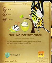 Five-bar Swordtail§Flutterpedia Misspelled