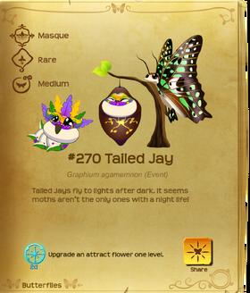 Tailed Jay§Flutterpedia