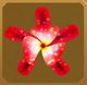 Mayan Star Set§AF 100%