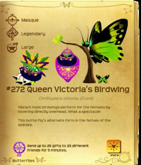 Queen Victoria's Birdwing§Flutterpedia Upgraded