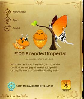 Branded Imperial§Flutterpedia