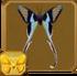 Green Dragontail§Headericon