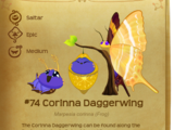 Corinna Daggerwing