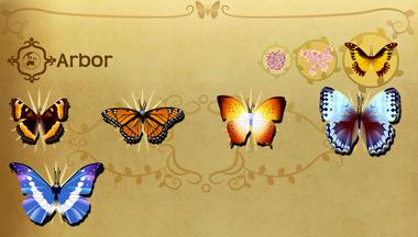 Arbor Set§Flutterpedia