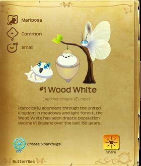 Wood White§Flutterpedia