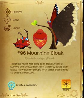 Mourning Cloak§Flutterpedia