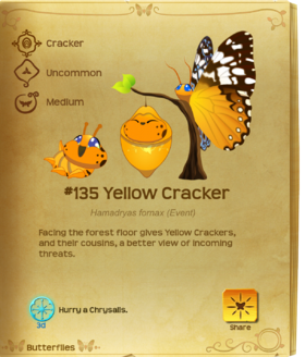 Yellow Cracker§Flutterpedia