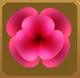 Mariposa Set§AF 50%